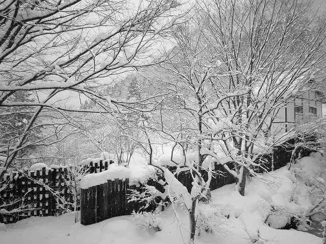 雪景色191.jpg