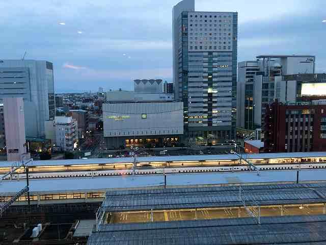 静岡駅を見下ろす1.jpg