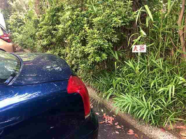 駐車場3.jpg