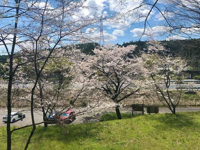 駐車場と桜と東北道1.jpg