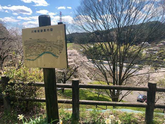 駐車場と桜と東北道2.jpg